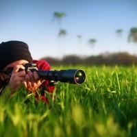 Myibidder снайпер
