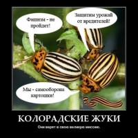сепаратисти на укр доменах